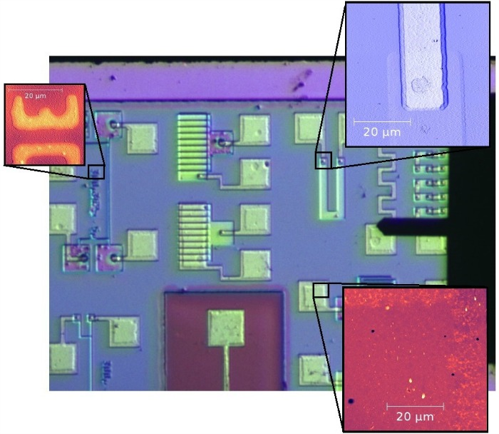 TT-AFM Video Optical Microscope shows test structure
