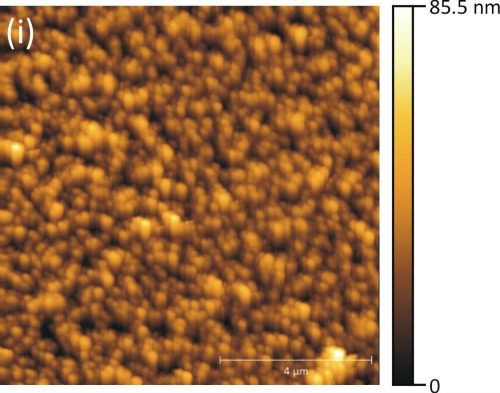 p3HT surface structure via AFM scan