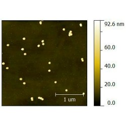 Gold Nanoparticles, 100 nm