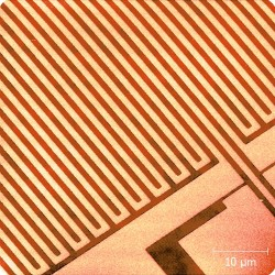 Patterned wafer after CMP; 50 µm x 50 µm