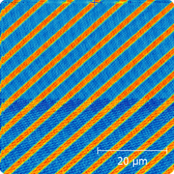 50 x 50 micron image of standard test sample with 100 nm rows
