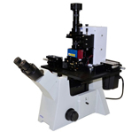 life sciences atomic force microscope LS-AFM